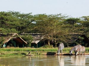 3 days sweet waters safaris